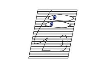 תוכנה לניהול מרפאות עיניים