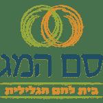 לוגו לאינטרנט-fe6e163b-d91f-4d0f-a188-98ef38ed02d0